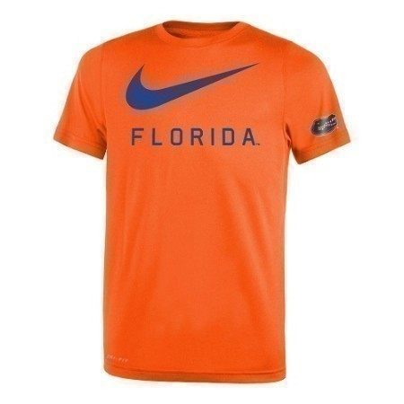 YOUTH FLORIDA NIKE LEGEND DNA TEE Thumbnail